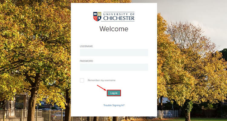 chichester moodle login
